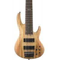 ESP LTD B-206 Spalted Maple Natural Bas Gitar